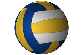 Mistrzostwa Regionu w piłce siatkowej