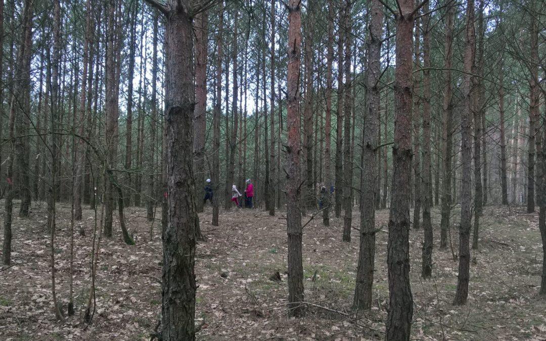 Las w szkle